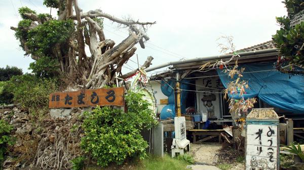 IMG 5298 沖縄、波照間島に行ってきた(2日目)