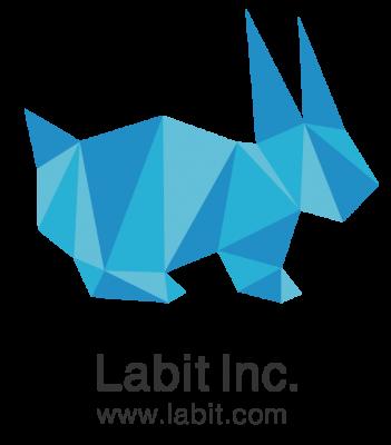 Labit CI 351x400 20歳で起業したスタートアップの代表取締役を辞めて、1年2ヶ月後にCEOに復帰した話